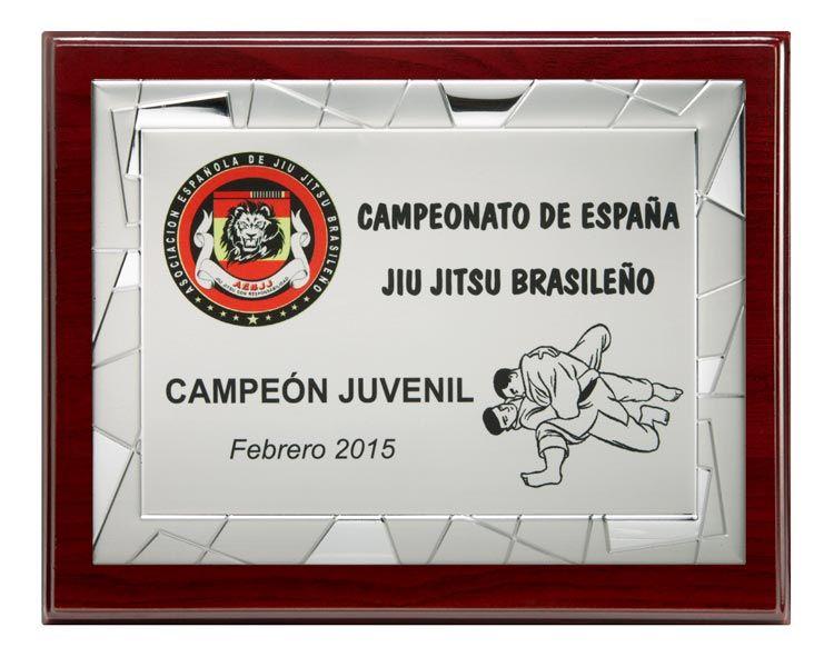 placa-con-grabado-e-impresion-en-color-www-apellaniz-es-2