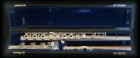 Flauta-grabada-por-Patxi-Apellániz-www.apellaniz.es-18